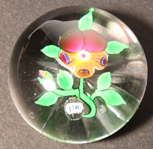 Rare Baccarat Pansy Paperweight dated 1851