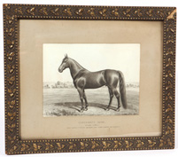 Signed A. J. Schultz Watercolor of Race Horse